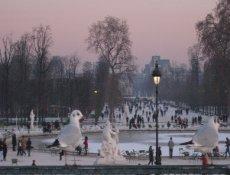 Tuilleries Gardens Paris