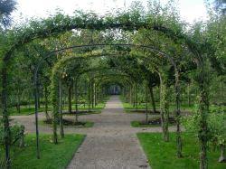 Albert Kahn Rose Garden Paris