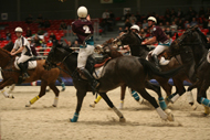 The PARIS' CUP Horseball Women's competition